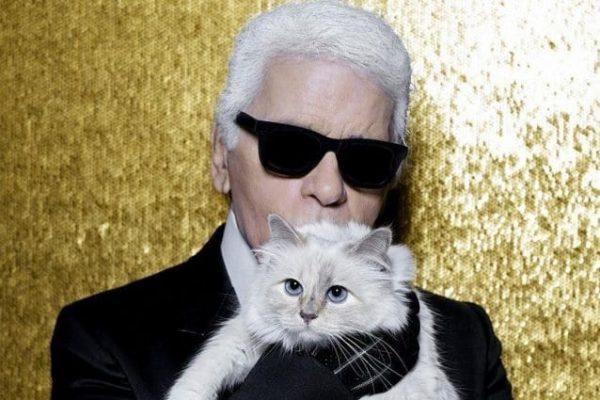 Choupette, la gatta ereditiera di Karl Lagerfeld