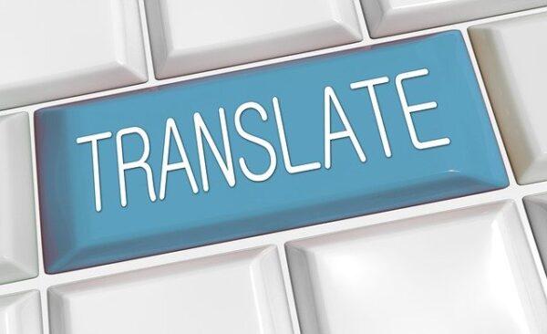 Il professionista e le traduzioni dall'olandese all'italiano e viceversa
